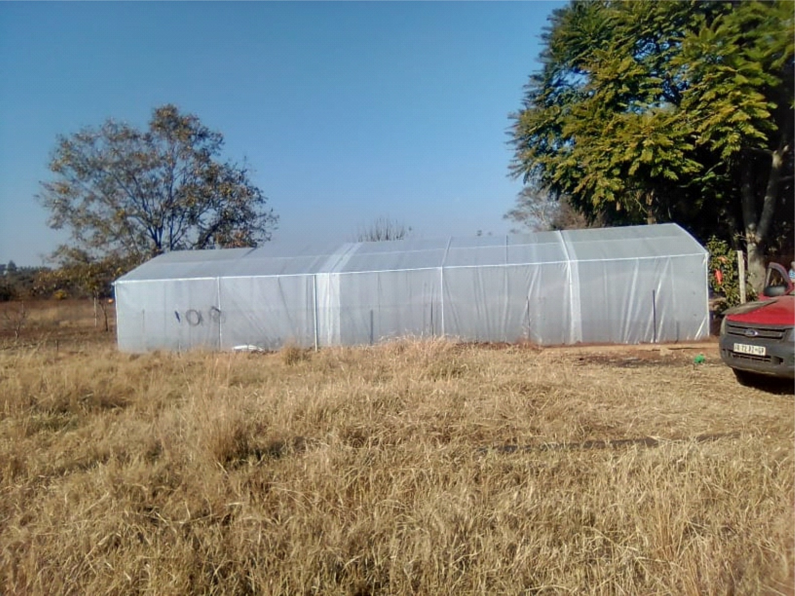 Hobby and Seedling Greenhouse Tunnels - NetTunnels South Africa